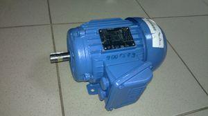 Двигатель B12510501